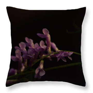 Feeling For The Last Bit Of Sunlight Throw Pillow