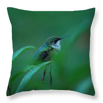 Feeling Green Throw Pillow