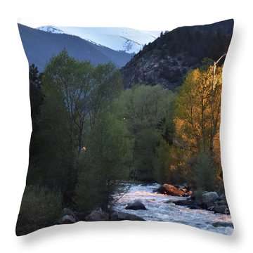 Feeling Lit Throw Pillow