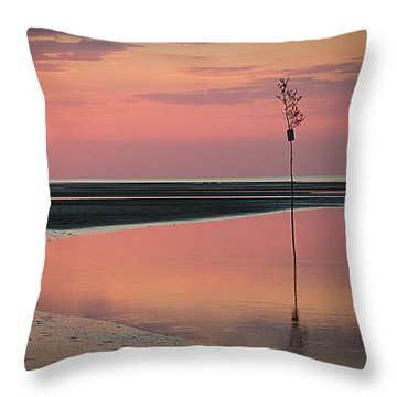 Feels Like A Dream Throw Pillow