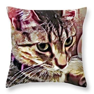 Feline Fancy Throw Pillow by David G Paul