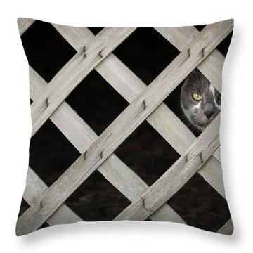 Feline Fence Throw Pillow