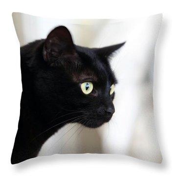 Feline On The Prowl Throw Pillow by Enzie Shahmiri