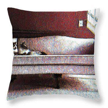 Throw Pillow featuring the photograph Felines Be Like... by Iowan Stone-Flowers