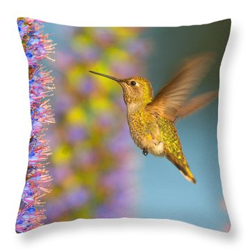 Female Anna's Hummingbird Huntington Beach California Throw Pillow