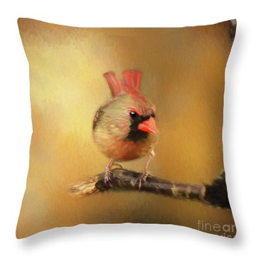 Throw Pillow featuring the photograph Female Cardinal Excited For Spring by Darren Fisher