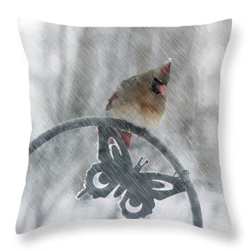 Female Cardinal In 2016 Blizzard Throw Pillow by Ericamaxine Price