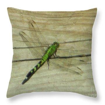 Female Eastern Pondhawk Dragonfly Throw Pillow