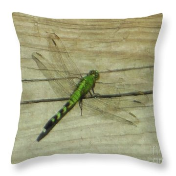 Female Eastern Pondhawk Dragonfly Throw Pillow