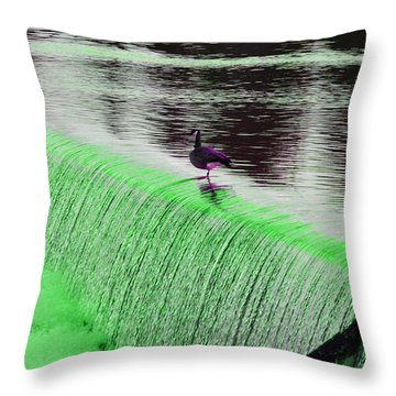 Female Geese 06 Throw Pillow