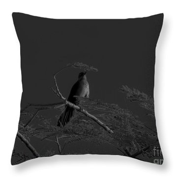 Female Grackle Throw Pillow