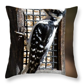 Throw Pillow featuring the photograph Female Hairy Woodpecker by Robert L Jackson