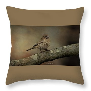 Female House Finch Throw Pillow by Diane Giurco