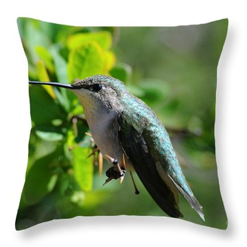 Throw Pillow featuring the photograph Female Hummer #2 by Sandra Updyke