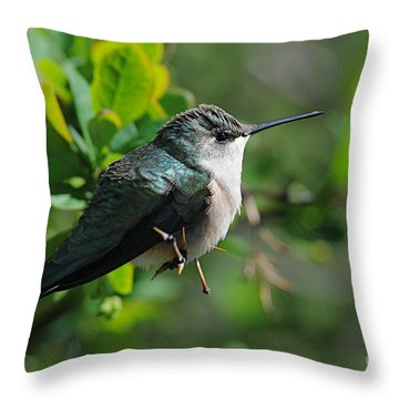 Throw Pillow featuring the photograph Female Hummer by Sandra Updyke