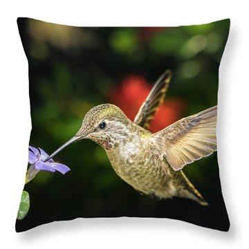 Throw Pillow featuring the photograph Female Hummingbird And A Small Blue Flower Left Angled View by William Lee