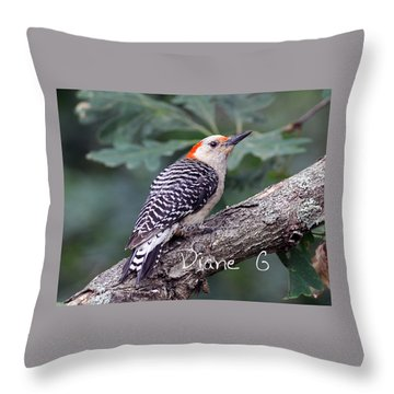Female Red-bellied Woodpecker Throw Pillow by Diane Giurco