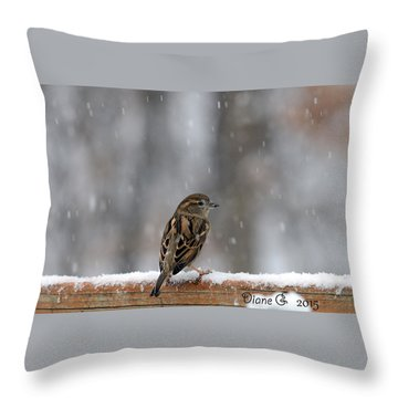 Female Sparrow In Snow Throw Pillow by Diane Giurco