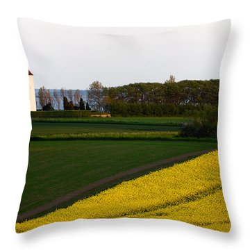 Femoe Fields And Church Throw Pillow by Eric Nielsen