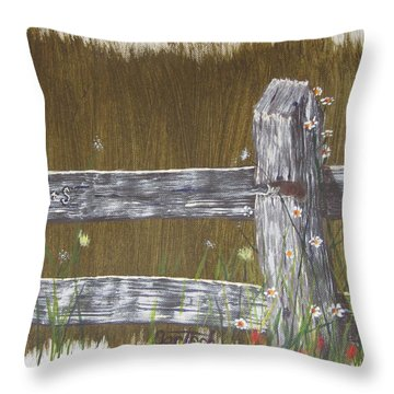 Fence D And S Throw Pillow