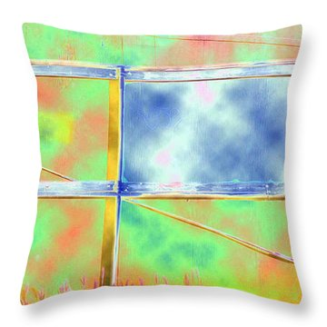 Fence Me In Colorfully Throw Pillow