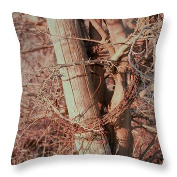 Fence Post Buddy Throw Pillow