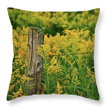 Fence Post7139 Throw Pillow by Michael Peychich