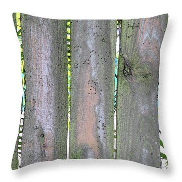 Fence South Throw Pillow