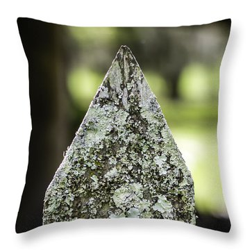 Fence With Moss Throw Pillow