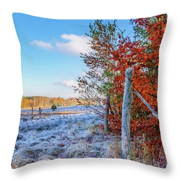Throw Pillow featuring the photograph Fenced Autumn by Dmytro Korol