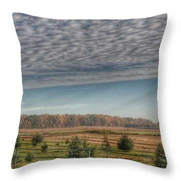 9017 - Fences, Firs And Fall Throw Pillow