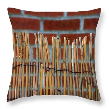 Fencing In The Wall Throw Pillow