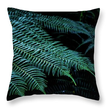 Patterns Of Nature 6 Throw Pillow