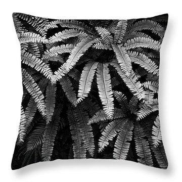 Fern And Shadow Throw Pillow