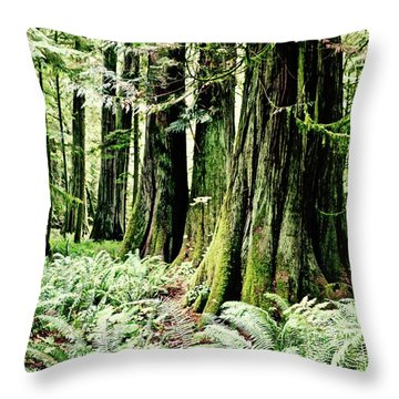 Fern And Trees Throw Pillow