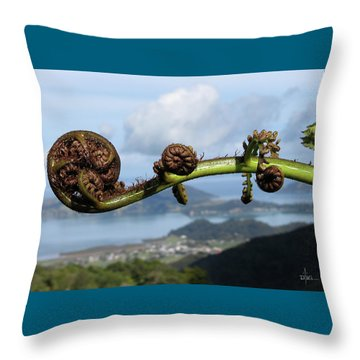 Fern Fiddlehead Throw Pillow