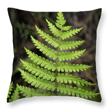 Fern Fron 01 Throw Pillow