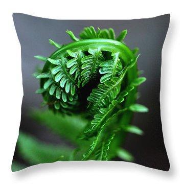 Fern Frond Throw Pillow by Debbie Oppermann