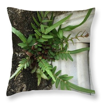 Throw Pillow featuring the painting Fern by Kim Nelson