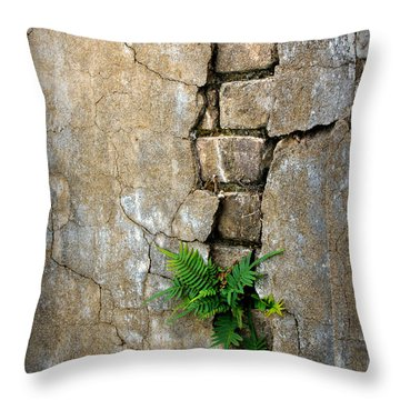 Fern Life Throw Pillow by Perry Webster