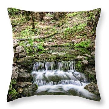 Fern Spring 5 Throw Pillow