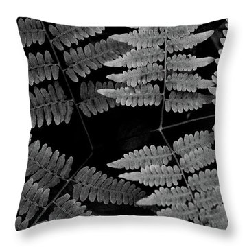 Throw Pillow featuring the photograph Ferns by Alana Ranney