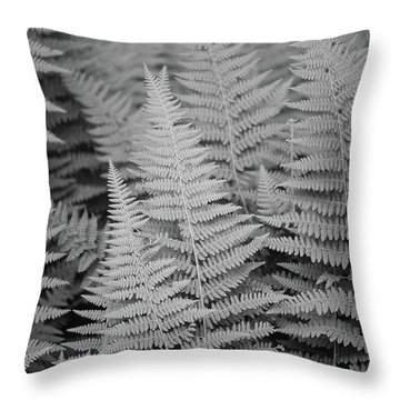Ferns Throw Pillow