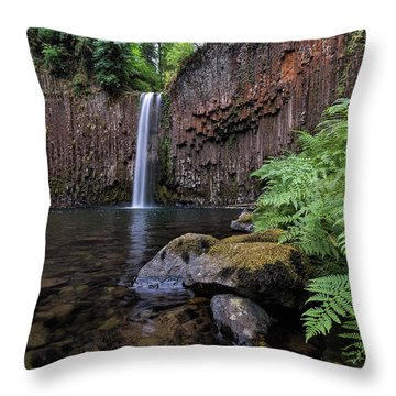 Ferns And Rocks By Abiqua Falls Throw Pillow by David Gn