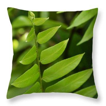 Ferns Galore Throw Pillow