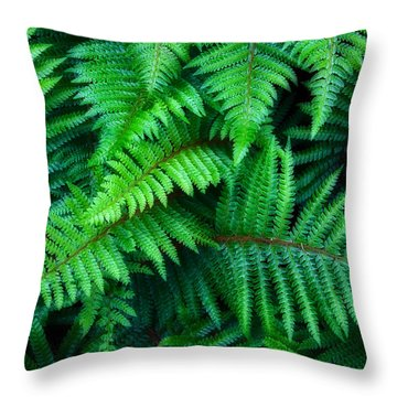 Ferns Throw Pillow by June Marie Sobrito