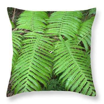 Ferns Throw Pillow by Karen Nicholson