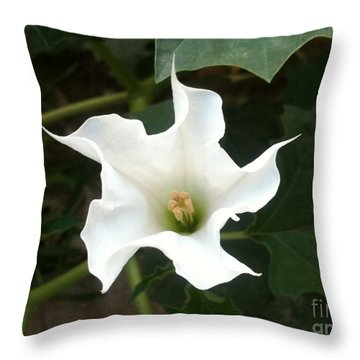 Proportionality Throw Pillows