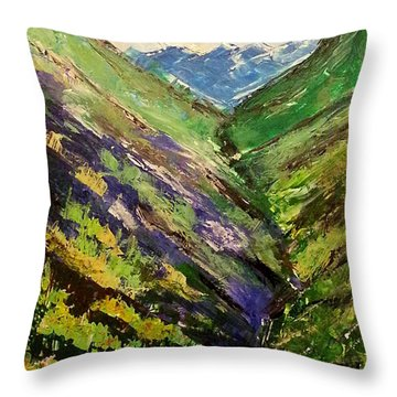 Fertile Valley Throw Pillow