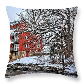 Fertile Winter Throw Pillow by Bonfire Photography